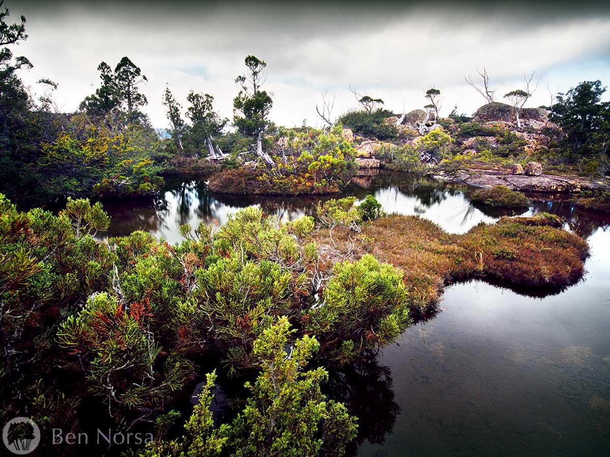 Landscape photographic print of The Traveller Range, Tasmania